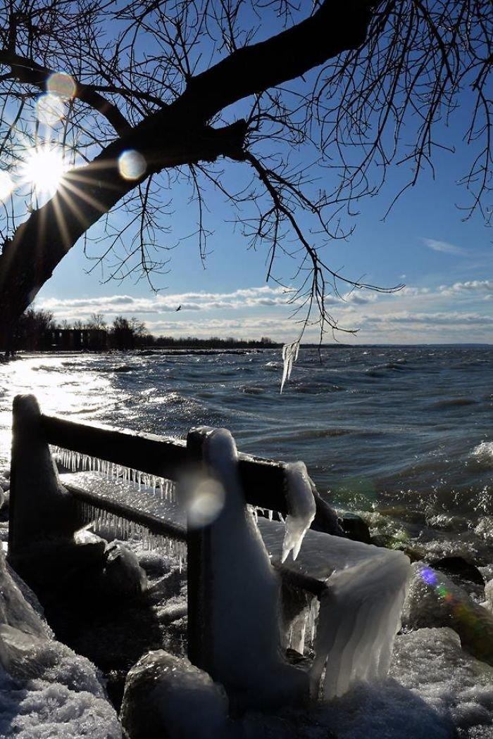 Фотограф из Венгрии запечатлела озеро Балатон, побережье которого сков