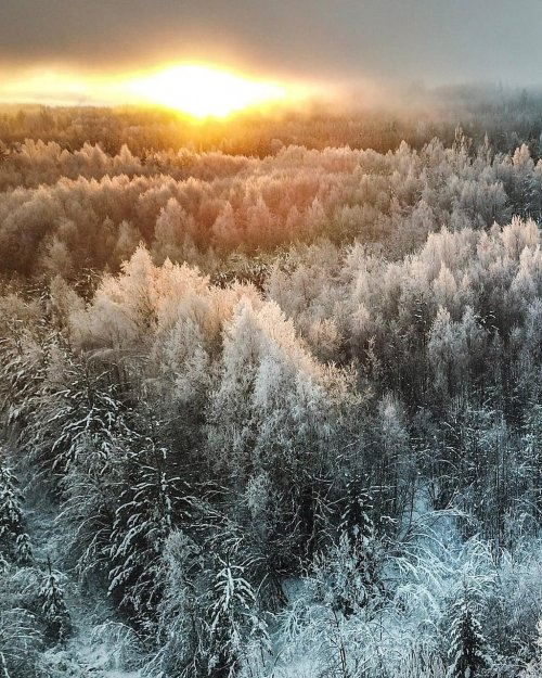 Прекрасная Швеция, вид сверху: потрясающие дрон-фотографии Вигго Лундберга (27 фото)