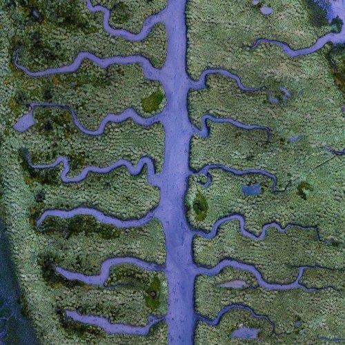 Абстрактные аэрофотоснимки, подчёркивающие хрупкую красоту водных путей Земли (15 фото)