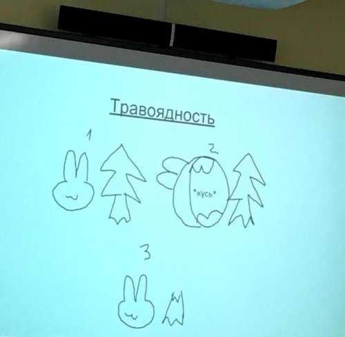 Как выглядит презентация по биологии настоящего прокрастинатора (7 фото)