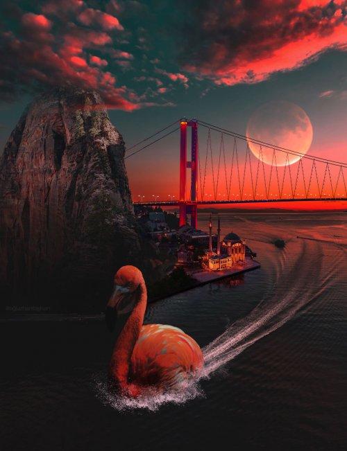 Сюрреалистический мир в фотоманипуляциях Огузхана Ташхана (23 фото)