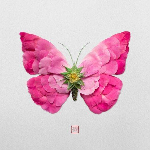 Художник из Канады превращает цветочные стебли и лепестки в различных животных (13 фото)