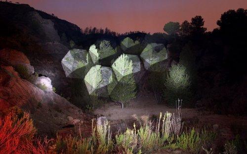 Световые проекции на деревьях, созданные испанским художником Хавьером Риерой (13 фото)