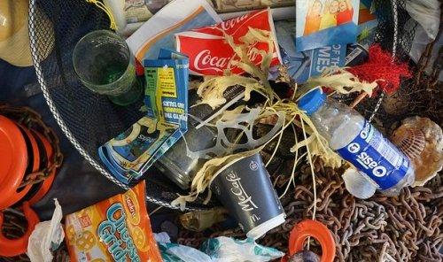 ТОП-25: Пугающие факты про пластиковое загрязнение, которые заставят вас пересмотреть свои привычки