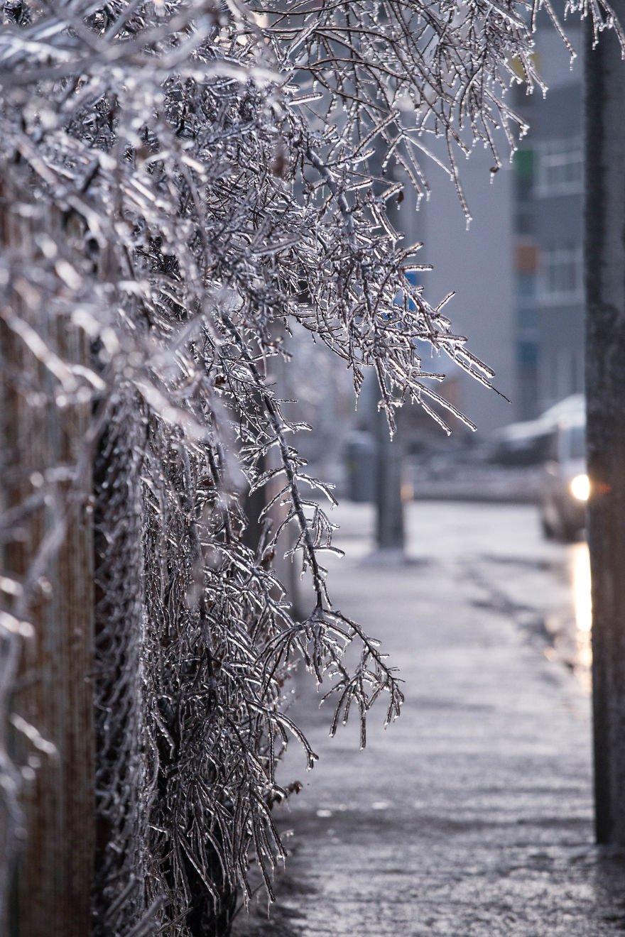 истории этих ледяной дождь картинки ногтевой пластины