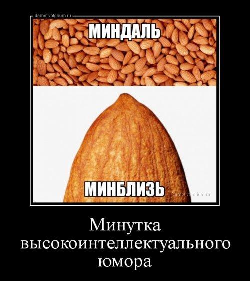 Пару шуточек для вас :-)