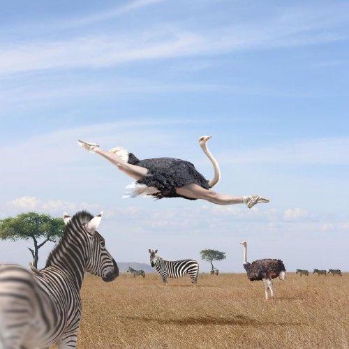 Австралийский цифровой художник изображает невероятный сюрреалистический мир (18 фото)