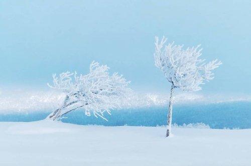 Живописная шведская зима в фотографиях Кристоффера Острёма (13 фото)