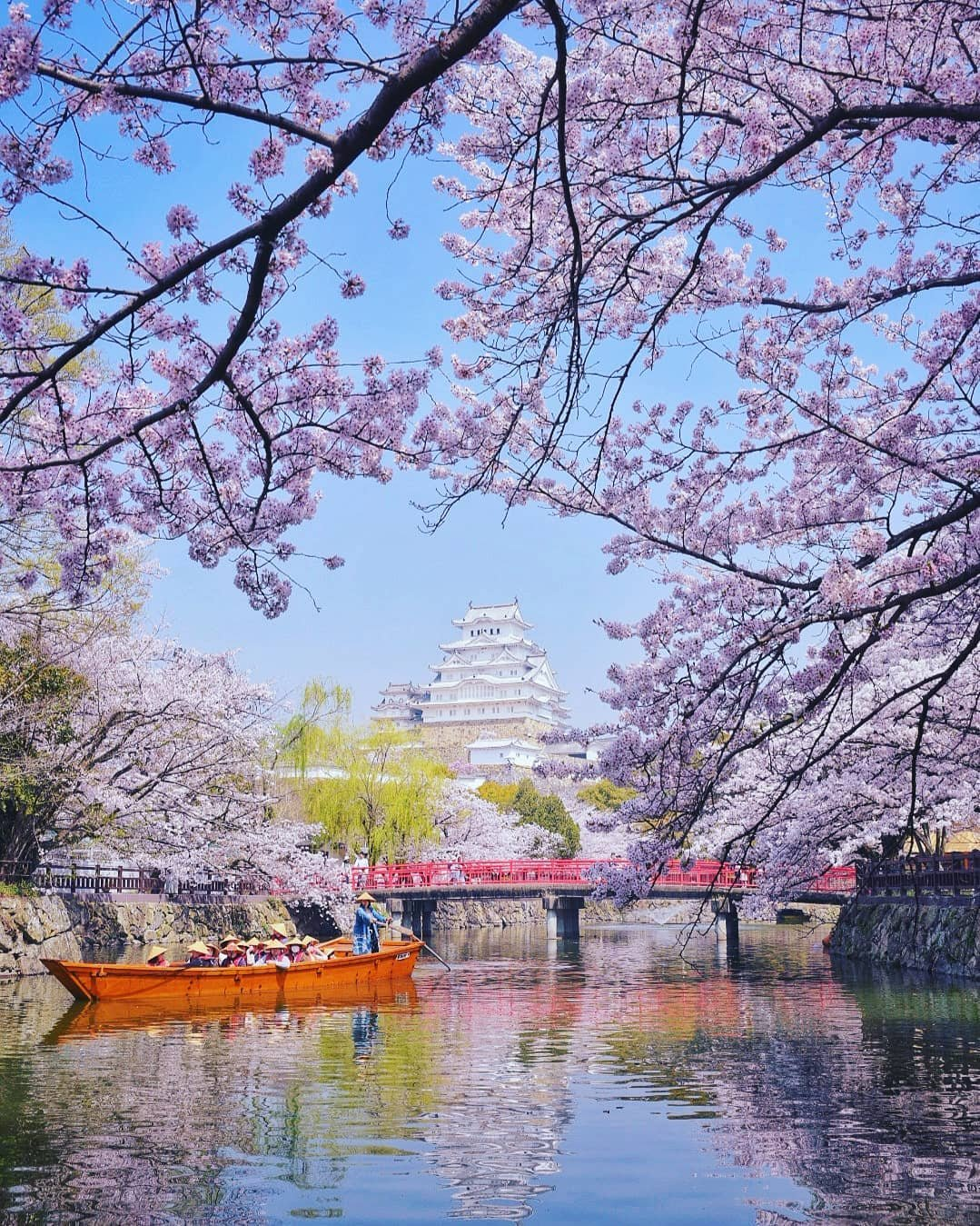 образом, после картинки весны в японии речной или морской