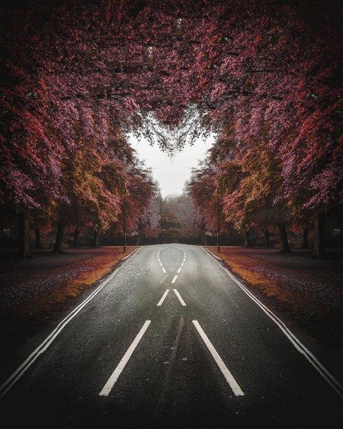 Прекрасные пейзажные фотографии Джоша Перретта (14 фото)