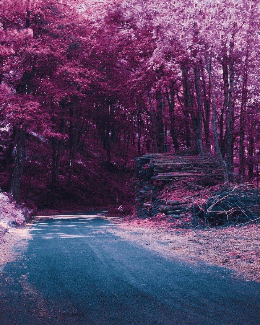 Картинка розовый мир