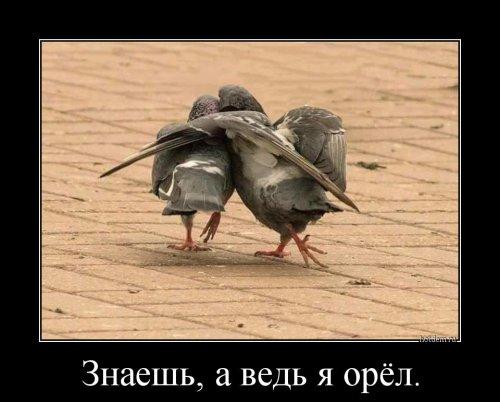 Посмеялся сам - поделись с другом!!!