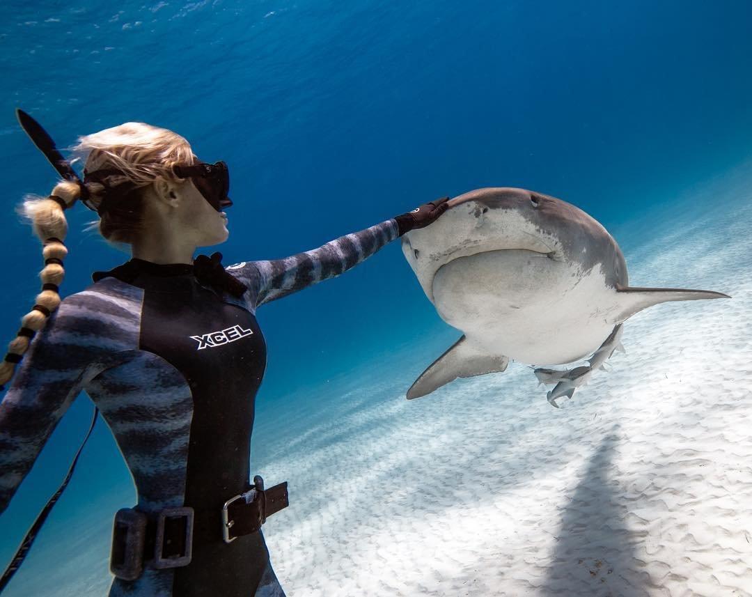 Девушка и акула картинка
