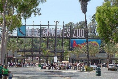 Зоопарк Лос-Анджелеса