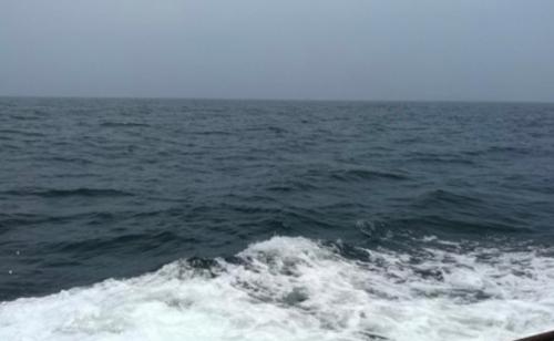 Китаец подарил своей девушке на день влюблённых участок моря почти за 100 тысяч долларов (2 фото)
