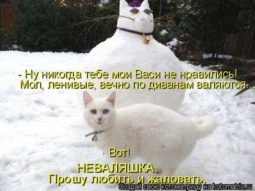 Котоматрица - 3 - Страница 36 1559928770_kotomatricy-5