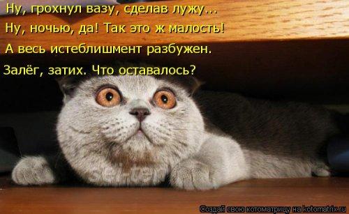 Котоматрица - 3 - Страница 36 1559928791_kotomatricy-10