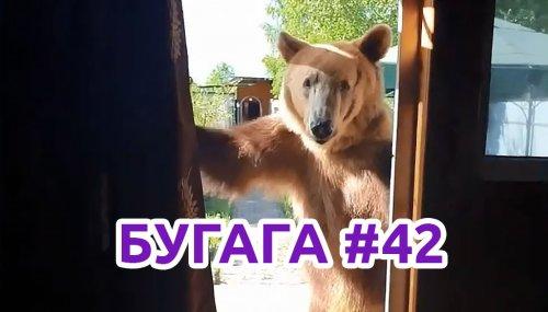 Свежая подборка видео-приколов и кубов БУГАГА #42