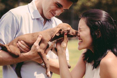 Пара из Бразилии решила провести свою предсвадебную фотосессию в приюте для животных (12 фото)