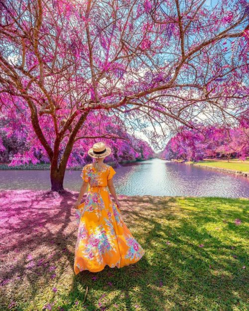 Красочные трэвел-фотографии Dotz Soh (35 фото)