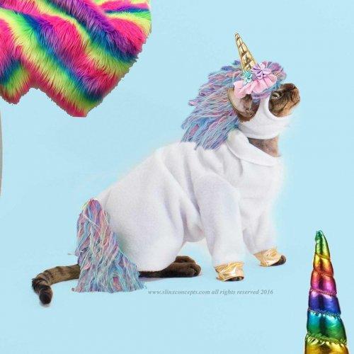 Дизайнер из Калифорнии создаёт забавные костюмы для кошек (9 фото)