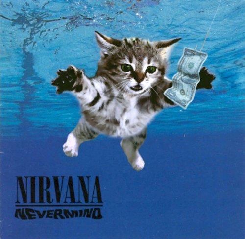 Культовые обложки музыкальных альбомов, воссозданные с котятами (20 фото)