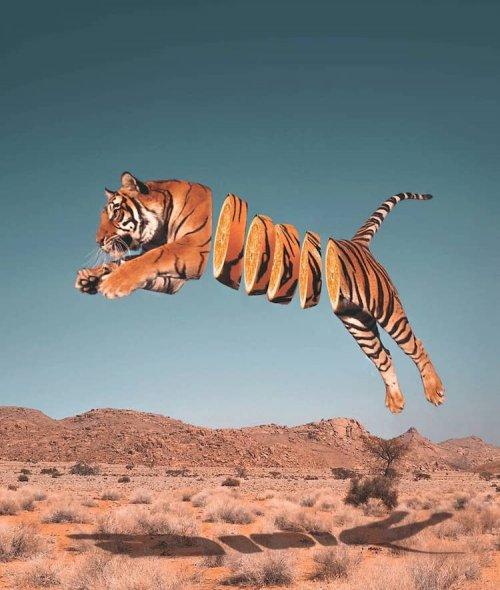 Сюрреалистические фотоманипуляции, в которых художник объединяет животных с едой (9 фото)