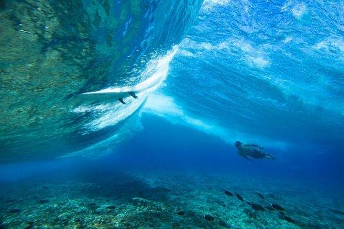 Чемпионат мира по сёрфингу на Таити (20 фото)