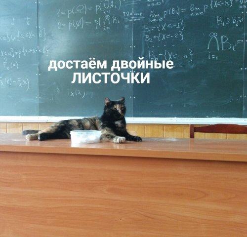 Если бы в школах были такие учителя, прогулов бы ни у кого не было (6 фото)