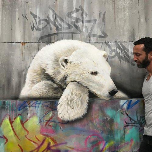 Граффити-художник создаёт 3D-рисунки животных, чтобы напомнить людям о правах животных (14 фото)