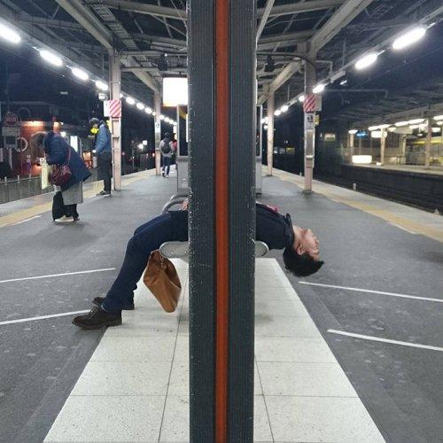 Люди (и не только), которые уснули в самых неожиданных местах и позах (24 фото)
