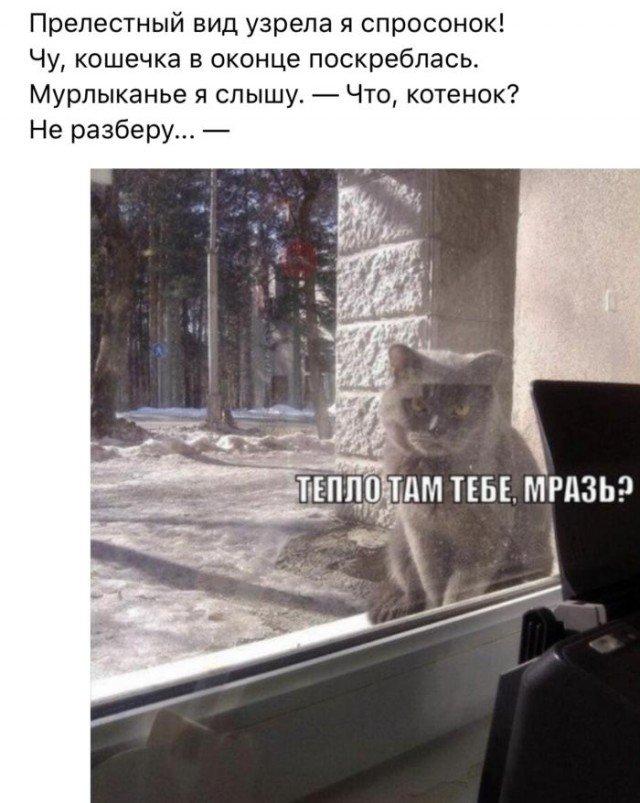 Картинки с рифмами (27 фото)