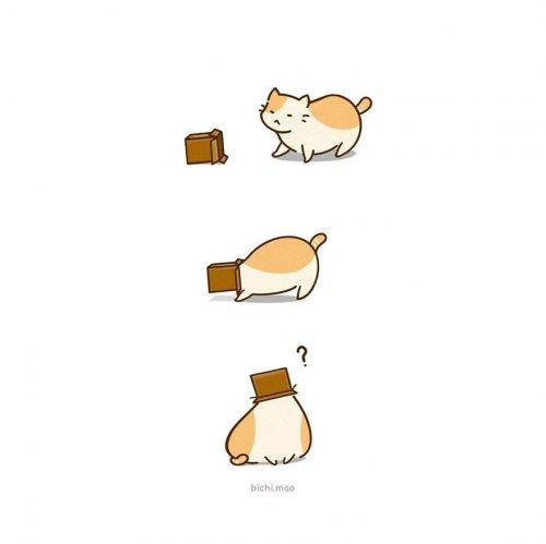 Повседневная жизнь котиков в иллюстрациях Олив Йонг (18 фото)