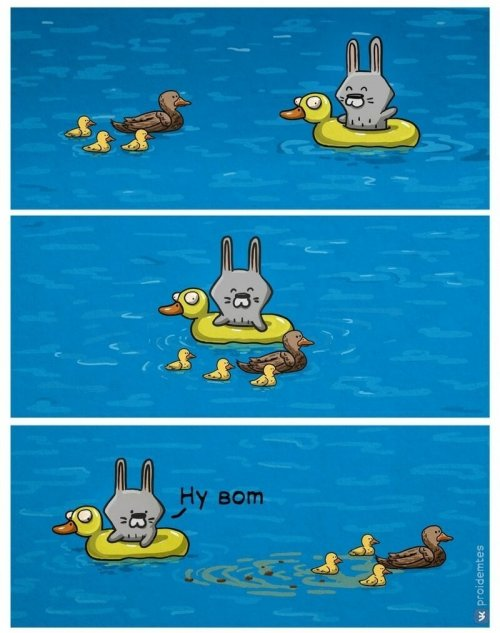 Комиксы о разочарованном зайчике (16 фото)