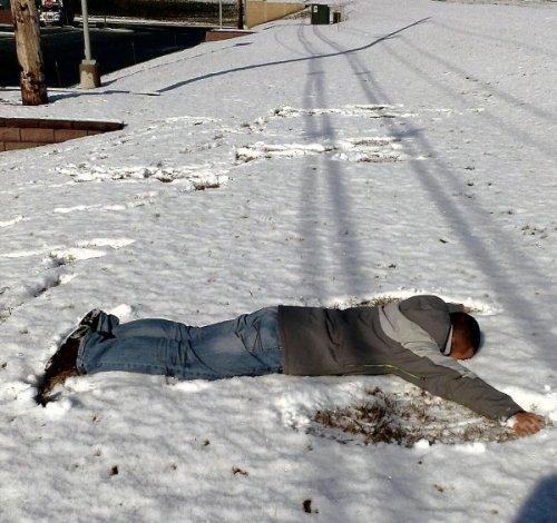 Бурная реакция на первый снег (15 фото)