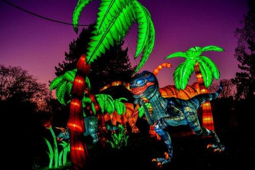Красочные световые инсталляции в Кёльнском зоопарке (15 фото)