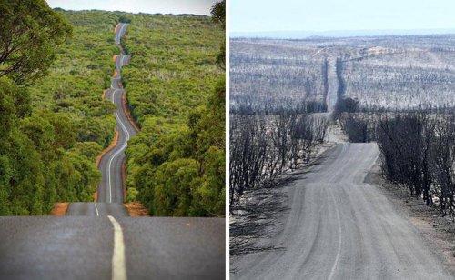 Австралия в сезон пожаров (19 фото)