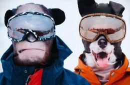 Забавные ультрареалистичные лыжные маски, превращающие людей в животных (21 фото)