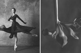 Фотограф сравнивает грациозных балерин с изящными цветами (12 фото)