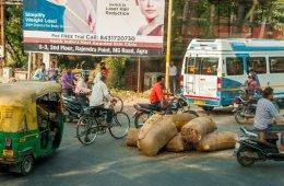 12 фотографий дорожного движения в Индии, после просмотра которых вы, скорее всего, измените свой взгляд на проблемы на наших дорогах