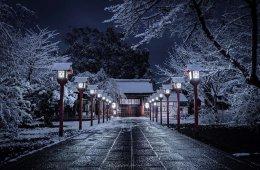 Зимний Киото выглядит, как в сказке (8 фото)