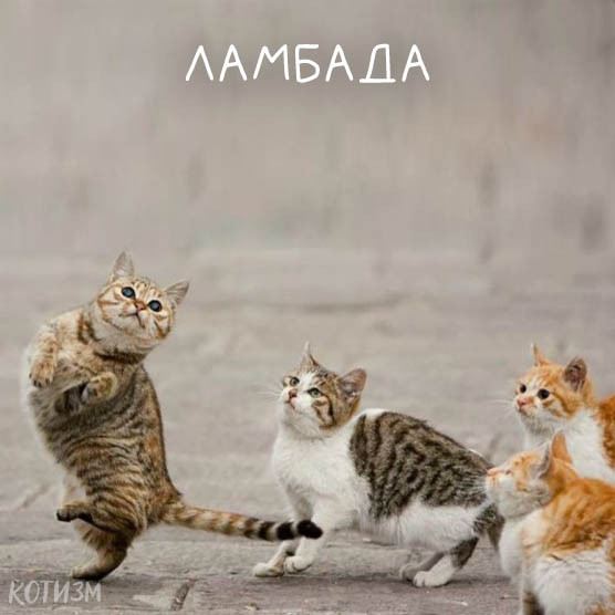 Смех Не Грех - сайт фотоприколов