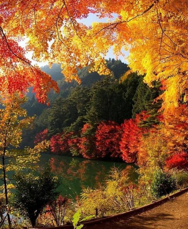 За что многие любят осень