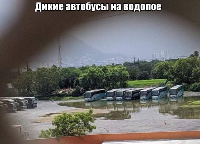Порция фото-приколов и картинок. ФОТО