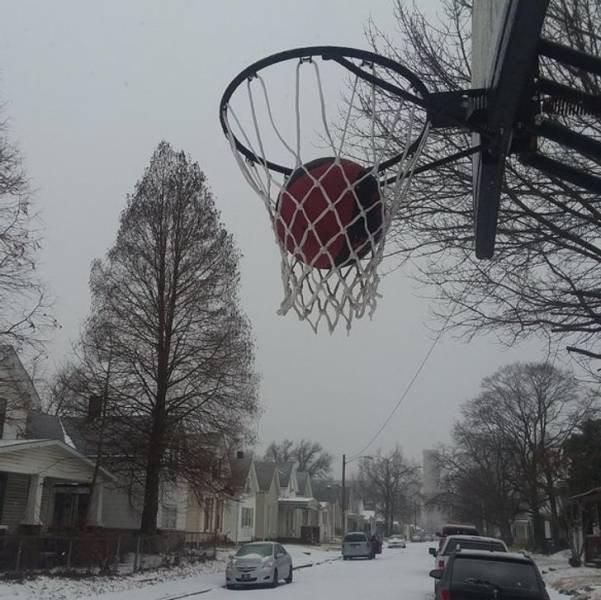 Когда на улице действительно холодно (19 фото)