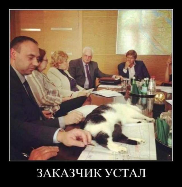 Свежих демотиваторов пост. ФОТО