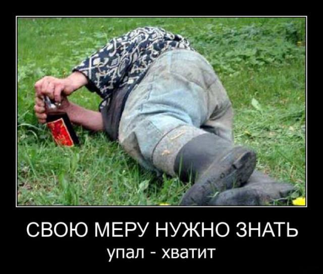 Свежие демотиваторы-приколы. ФОТО