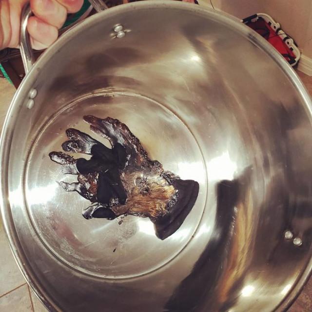 Кулинарные фейлы, или Почему некоторых нельзя пускать на кухню