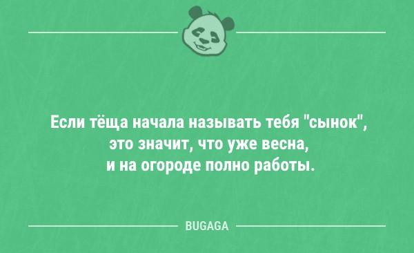 Смешные анекдоты для хорошего настроения (14 шт)