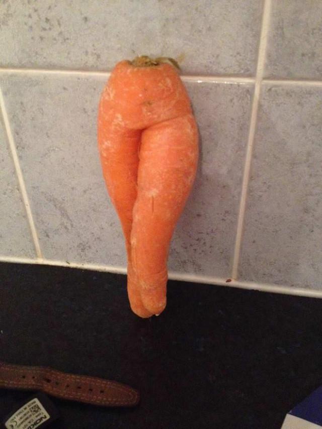 Самая большая в мире фотоколлекция соблазнительной моркови